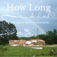 How Long, Oh Lord? A Different Kind of Rainbow